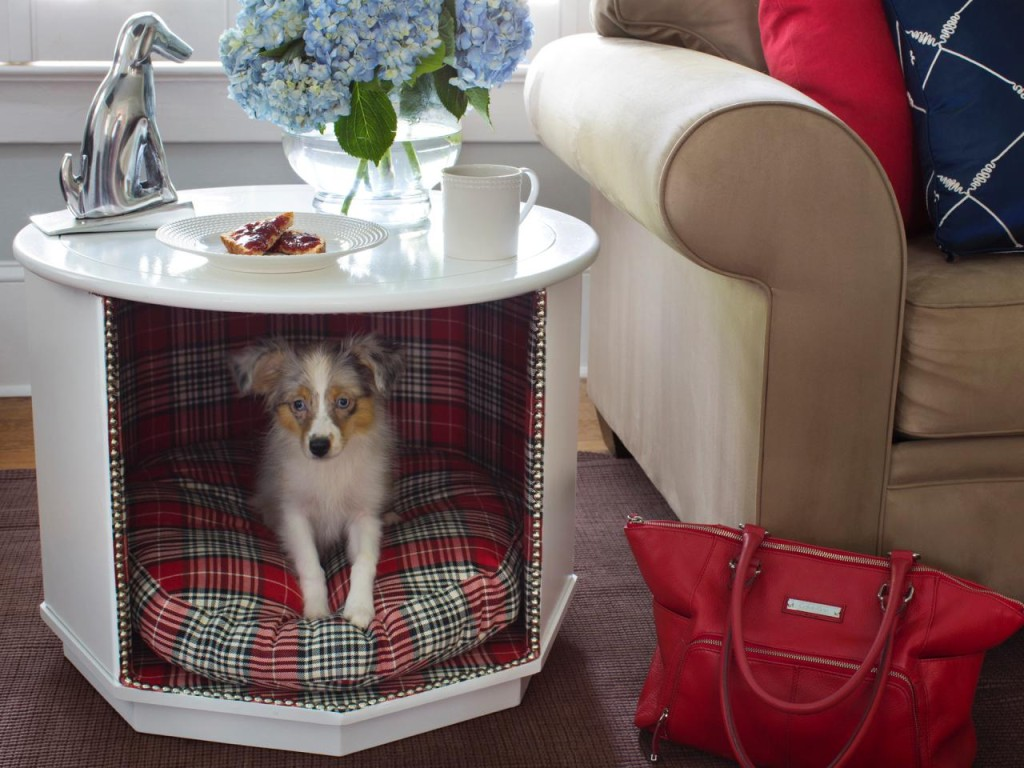 Do It Yourself Ideas And Projects 12 Amazing Diy Dog Beds