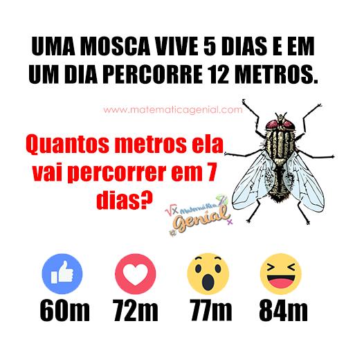 Uma mosca vive 5 dias e em um dia percorre 12 metros. Quantos metros ela vai percorrer em 7 dias?