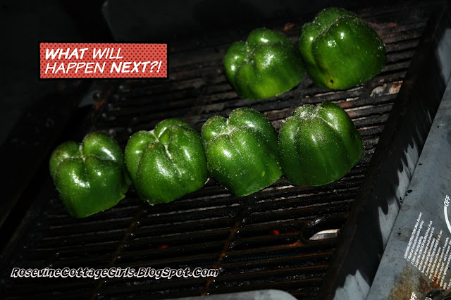 photo of grilling bell peppers | Stuffed Bell Peppers, fire roasted stuffed bell peppers, stuffed bell pepper recipe, stuffed bells, By Rosevine Cottage Girls | rosevinecottagegirls.com