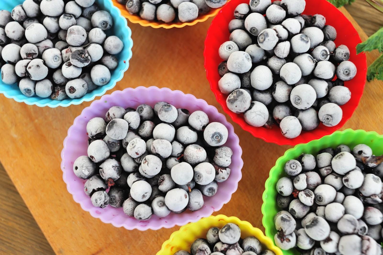 Tricki Zdrowej Kuchni 4 Jak Mrozić Owoce Na Sypko