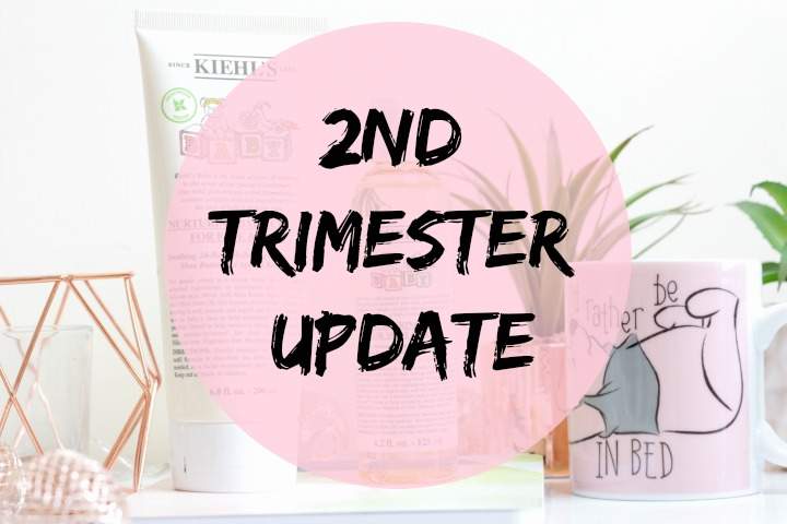 2nd trimester pregnancy update