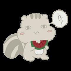 Surisu-Risu