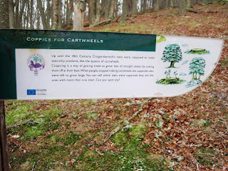 A marker post for walkers, referring to Coppicing.