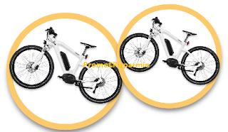 Logo ''La Foresta San Benedetto'': vinci BMW Cruise e-bike e adotta un albero