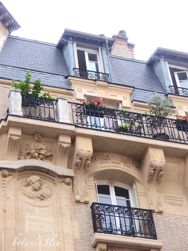 paris-apartment-with-carved-stone-details