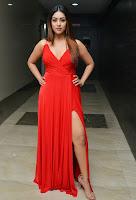 Anu Emmanuel Glam Look Stills TollywoodBlog