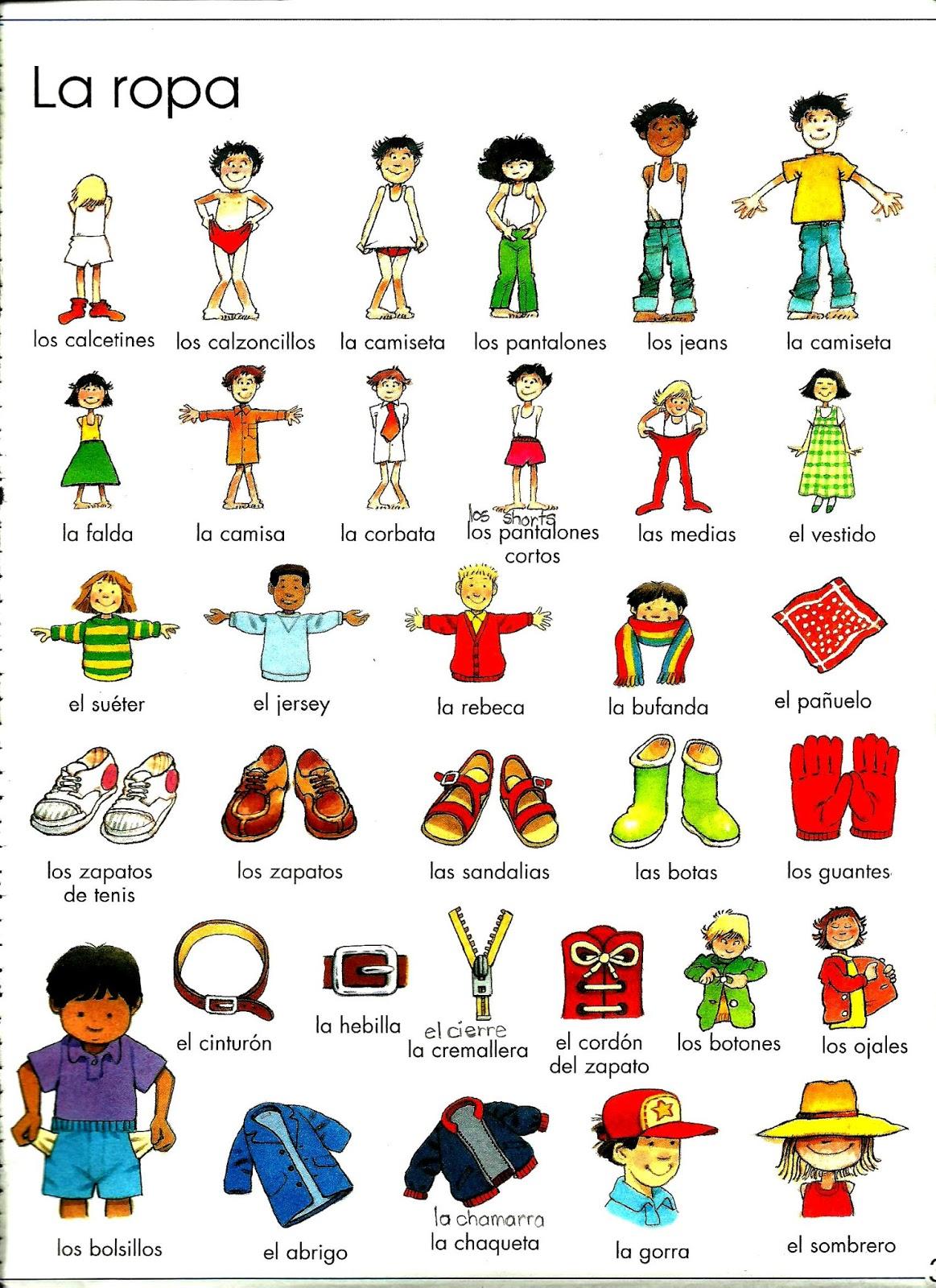 Vocabulario de ropa en ingles con imagenes for Interior sinonimos