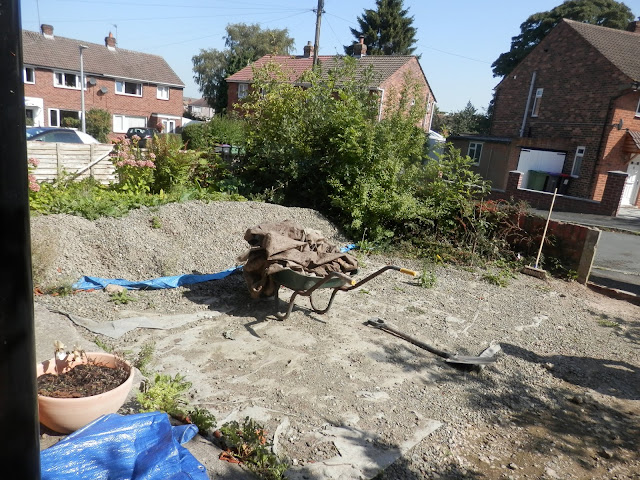 Diary of a permaculture (ish) garden, August 2018.  From UK permaculture gardener secondhandsusie.blogspot.com #suburbanpermaculture #gardenblogger #suburbangarden