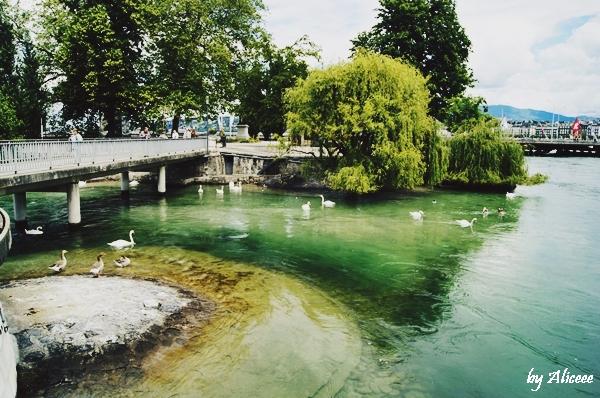 geneva-lac-elvetia