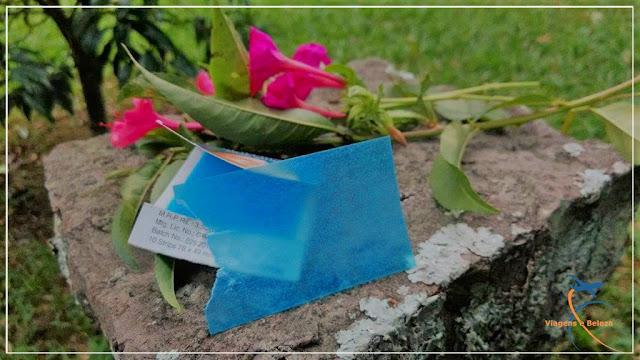 Curiosidade indiana: sabonete em papel!