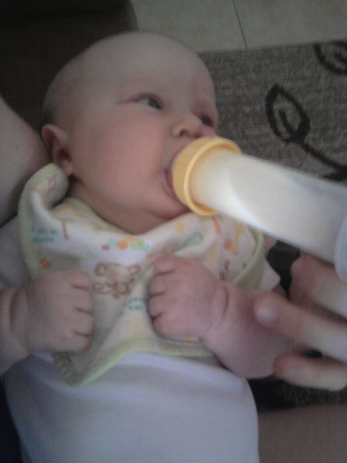 3ba89a16c52b And now, I shall leave you with a pic of Goosey taking the bottle like a  champ: