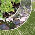 Libros de agronomia pdf gratis: Manual de Hidroponia