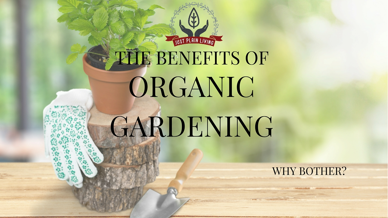 If you have not switched your garden to organic, non-chemical methods, here are some solid reasons to do so.