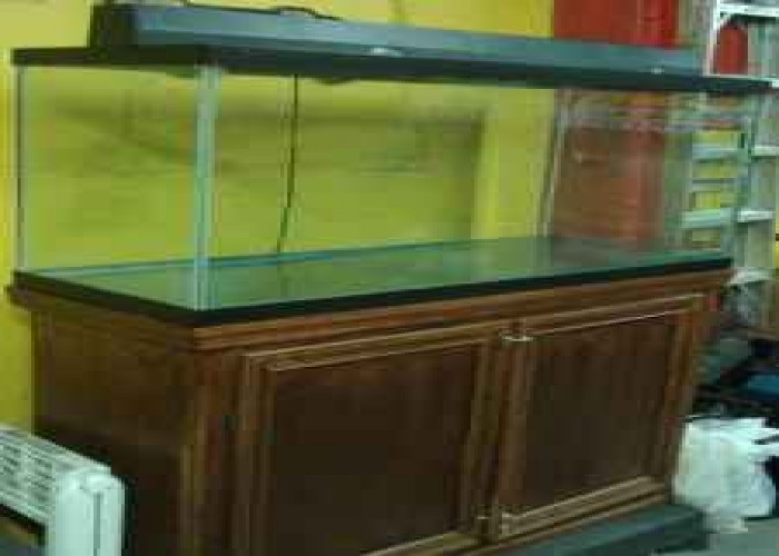 example of the 90 gallon aquarium that will come into my house over my