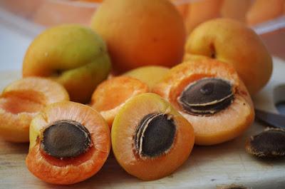 cara menghapus tato dengan Metode Scrub Apricot