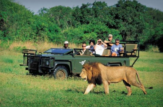 6 Exciting Activities To Spice Up Your Travel Experience In Africa
