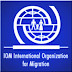Latest Job Vacancies:  International Organization for Migration (IOM) Fresh Job Recruitment (3 Positions)