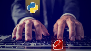50% off: Python & Ruby programming Complete step-by-step Tutorial