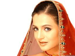 Bollywood actress amisha patel wallpapers and images