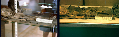 Mummy Pics Juxtaposed