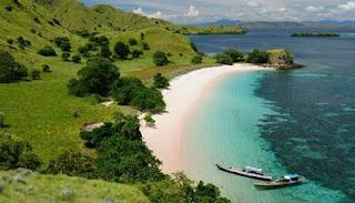 obyek wisata pantai pink atau pantai tangsi nusa tenggara timur