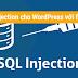 Chống SQL injection hiệu quả cho WordPress với file .htaccess
