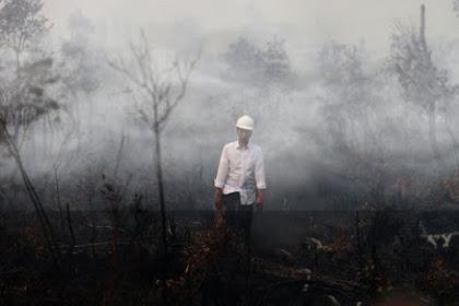 Jokowi Divonis Melawan Hukum Dalam Kasus Kebakaran Hutan, Kok Bia?