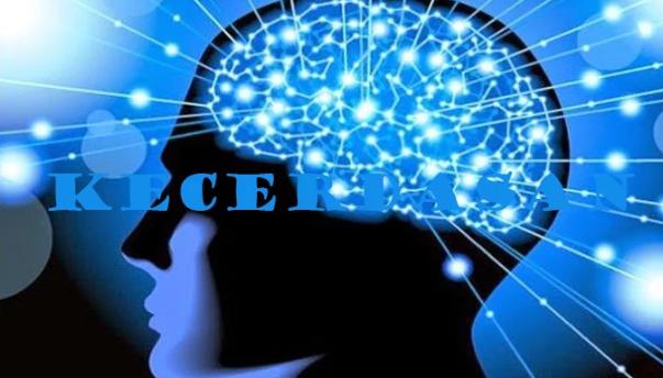 Pengertian Kecerdasan, Jenis dan Faktor Yang Mempengaruhi Kecerdasan Terlengkap