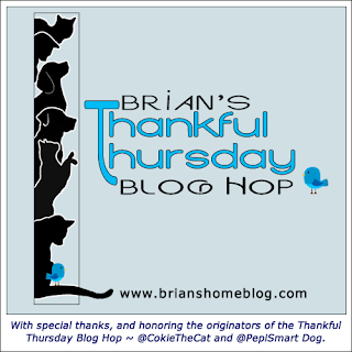 Brian's Thankful Thursday blog hoop badge