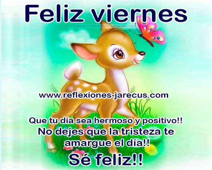 Feliz viernes ✅ que tu día sea hermoso y positivo, no dejes que la tristeza te amargue el día, sé feliz.