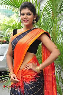 Model Sangeeta Kamath Pictures in Saree at Silk India Expo Curtain Raiser  0014.JPG
