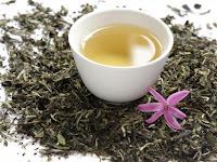 Benefits of White Tea: The Secret behind Royal Tea