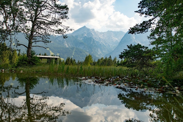 Wanderung zur Stepbergalm  Wandern Garmisch-Partenkirchen  Stepbergtour Alpentestival-Garmisch-Partenkirchen 15