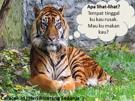 gambar-hari-binatang-sedunia-3