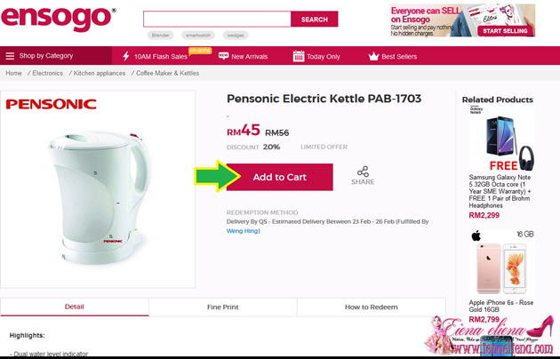 Pensonic Electric Kettle