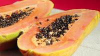 Papaya Immunsystem