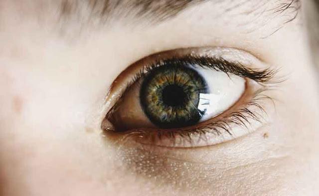 bahan alami terbaik untuk menjaga kesehatan mata
