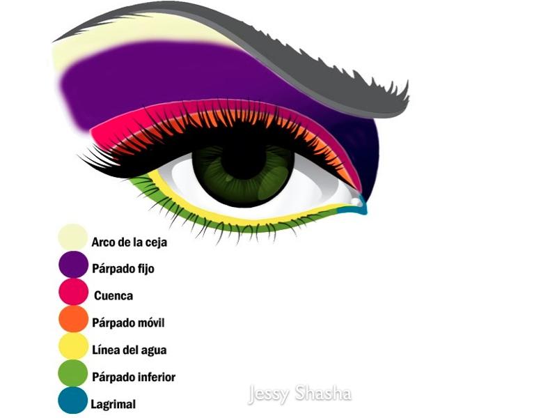 Famoso Diagrama Del Ojo Para Los Niños Imagen - Anatomía de Las ...