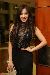 Angela Krislinzki in Transparent Black Gown at Rogue Movie Teaser Launch 1st March 2017 099.JPG