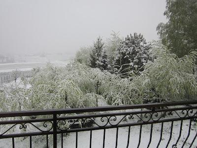 powrót zimy - Pogórze Wielickie