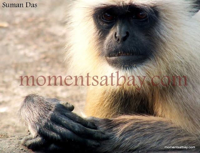 I am You momentsatbay