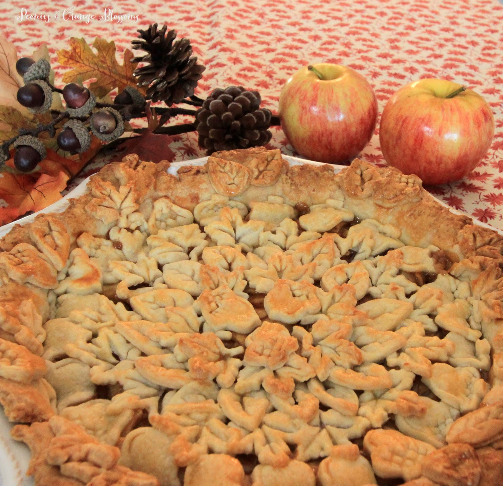 The best apple pie recipe - seriously, I have been making this for years and get rave review from everyone!