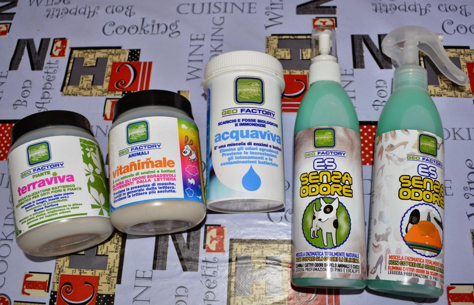 Puzza scarichi domestici - Come eliminare la puzza di fogna dal bagno ...