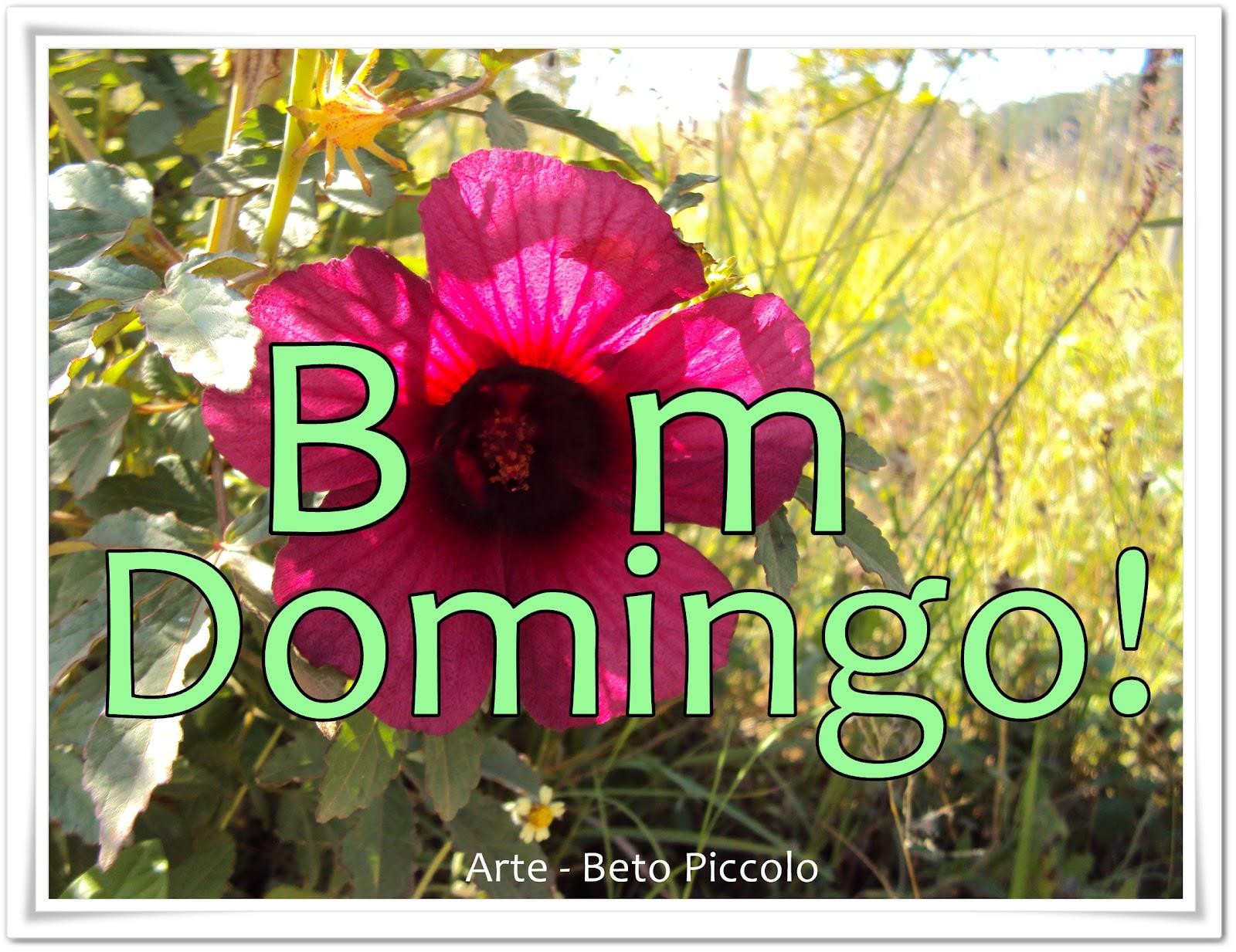 Frases De Bom Domingo: Frases Tenha Um Ótimo Domingo Para Facebook