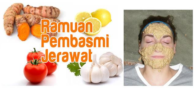 ramuan alami pembasmi jerawat
