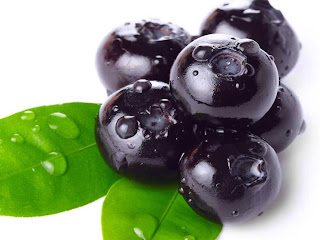 Bilberry fruit images wallpaper