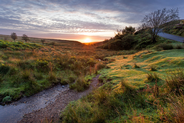 Early morning sunlight in the National Park of Exmoor
