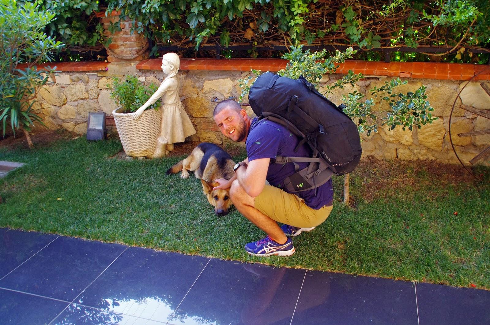 Casa Villa Hotel Eceabat dog