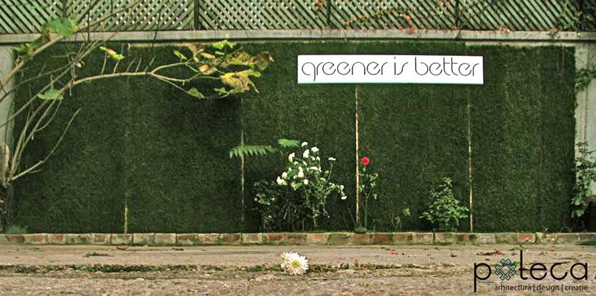 Intalatie vegetala design cu plante Poteca Studio Greener is better peisagistica design corporate