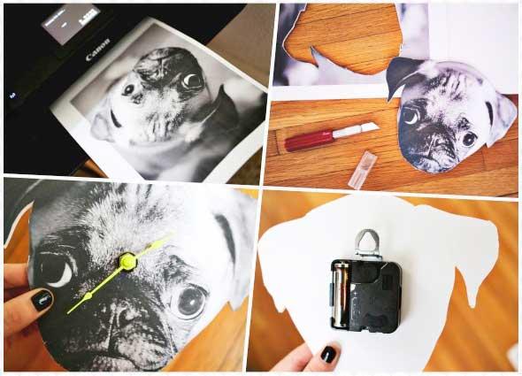 reloj, pared, fotos, mascotas, manualidades
